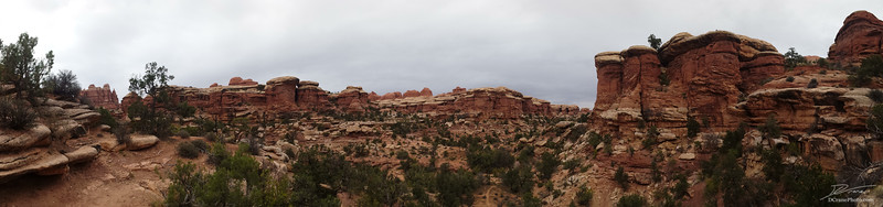 Along the trail to Chesler Park in the Needles District of Canyonlands National Park.