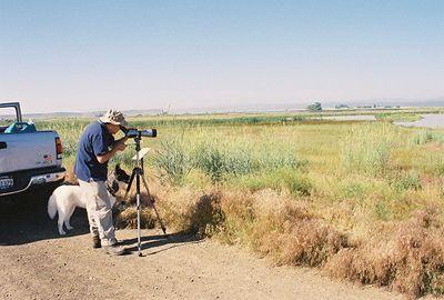 7/3/05 Birding with Hana at the Modoc National Wildlife Refuge (Auto Tour), Modoc County, CA