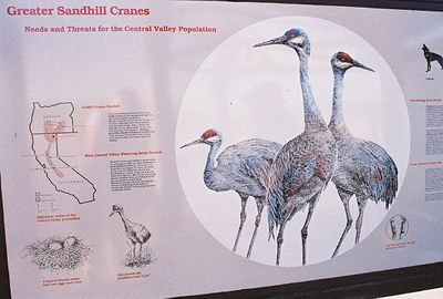7/3/05 Modoc National Wildlife Refuge Information Kiosk (starting point of Auto Tour)