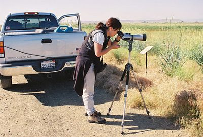 7/3/05 Breaking in my new Zeiss 85T Diascope at the Modoc National Wildlife Refuge (Auto Tour). Modoc County, CA