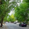 Quiet street in Tiraspol