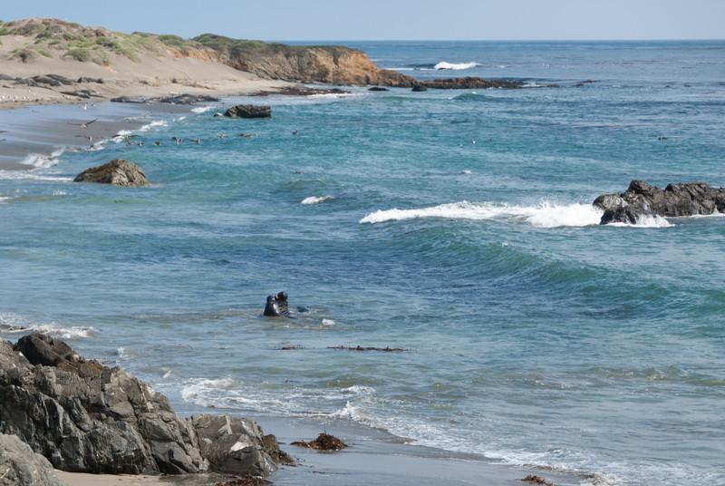 Enjoying the view at Morro Bay