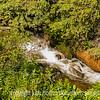 Little Arkansas River in Monarch Campground, Colorado