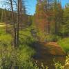 Little Arkansas River, Monarch Campground, Colorado