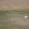 Quintessential Mongolia.