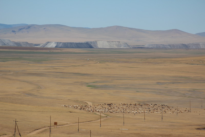 Here's Mongolia in a nutshell:  Dirt road to nowhere, a herd of cattle, and a mine in the background.  What will the next chapter in this country's history hold?