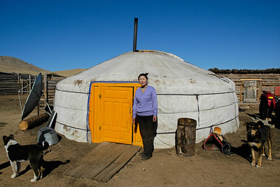 Pictures of the lady of the house outside her ger in Dornogobi aimag, Urgun soum. The dogs are part of the family. They are also well off family and have a tractor and satellite dish and solar power. Gobi, Mongolia.  Mongolian Ger (Yurt) in Gobi desert. Central Mongolia.   Traditional gers consist of a circular wooden frame carrying a felt cover. The felt is made from the wool of the flocks of sheep that accompany the pastoralists. The timber to make the external structure is not to be found on the treeless steppes, and must be traded.  The frame consists of one or more lattice wall-sections, a door-frame, roof poles and a crown. Some styles have one or more columns to support the crown. The (self-supporting) wood frame is covered with pieces of felt. Depending on availability, the felt is additionally covered with canvas and/or sun-covers. The frame is held together with one or more ropes or ribbons. The structure is kept under compression by the weight of the covers, sometimes supplemented by a heavy weight hung from the center of the roof. They vary regionally, with straight or bent roof-poles, different sizes, and relative weight.  It is designed to be dismantled and the parts carried on camels or yaks to be rebuilt on another site.