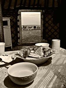 Milk-Tea-Bread-Gher-Cows--Mono-1925