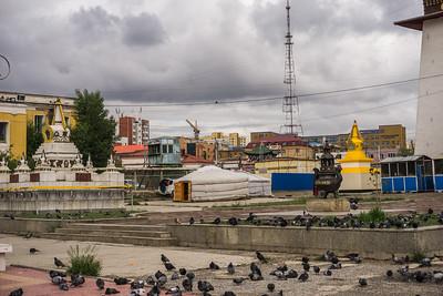 Stupa, pigeons and gers at the Gandan Monastery