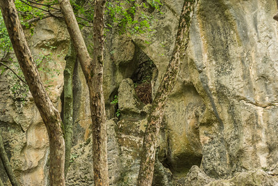 The varied beauty of the Stone Forest