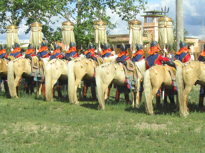 Naadam horse butts.
