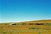 Mongolia 2008 Nomadic horse herder about 10.5 miles east of Tsetserleg. Central Mongolia August 26