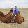 Camels stink.