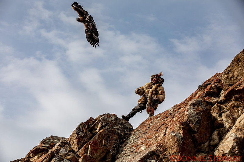Mr. Ardak's Eagle flying
