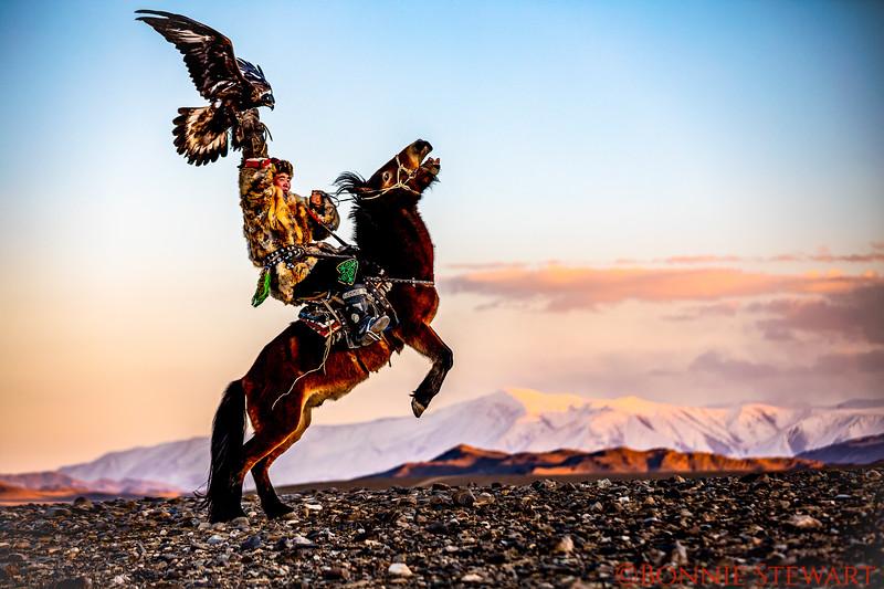Guna, Mr. Sailou's son,  on horse back, Kazakh Eagle Hunter