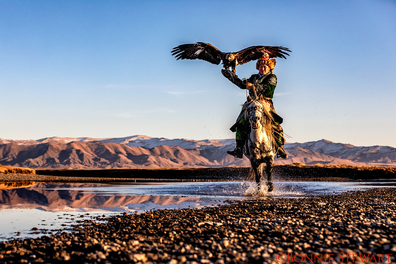 Mr. Bashakhan running in the water with his eagle and horse.  The mountains are reflected in the water.