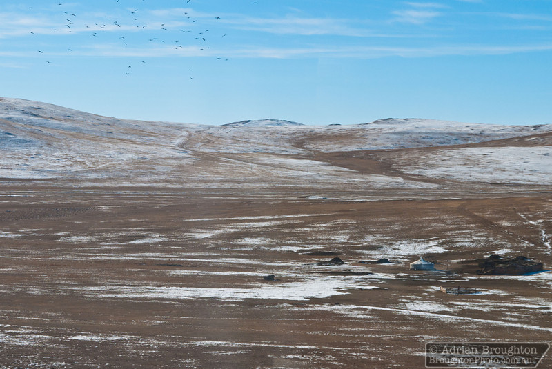 Birds flying above a Ger camp in Mongolia from the Trans-Siberian railway, between Beijing and Ulaanbaatar.