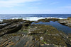 Hiking on Monhegan Is  (4)