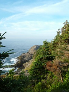 Backside of the island, looking towards Gull Rock