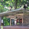 IMG_1812 - 2012-12-27 at 18-17-17