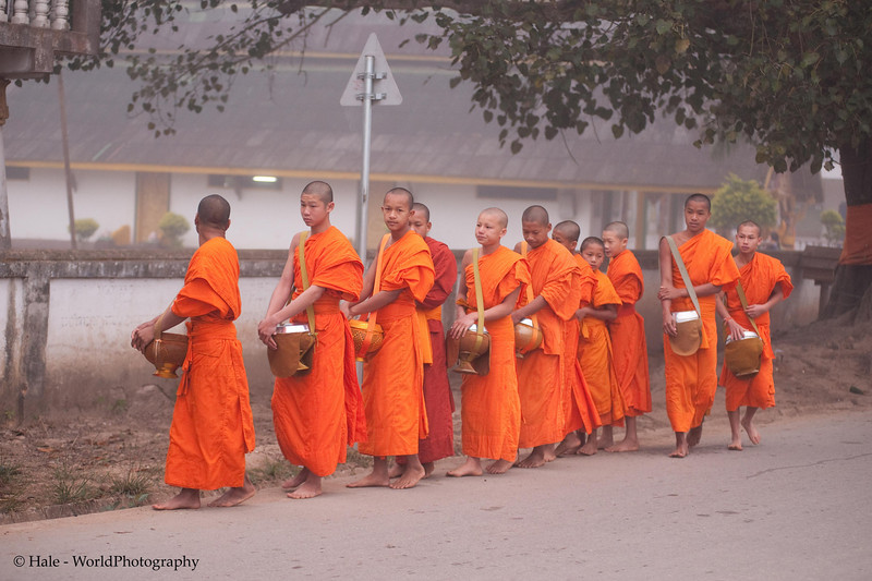 """Lao Monks Head Off In the Morning Mist On Their Daily Alms Walk - """"Tak Bart"""", Ban Khone, Lao People's Democratic Republic"""