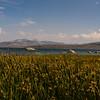 Mono Lake, Tufa & Mountains