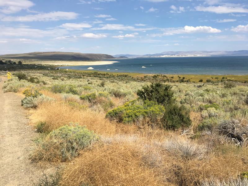Mono Lake with tufa