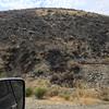 Burned hillside