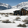 Old Cabin near Mono Lake