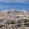 Mono-Inyo Volcanic Craters