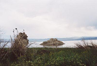 8/15/04 Mono Lake County Park, Lee Vining