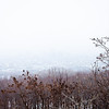 Mont Royal-10