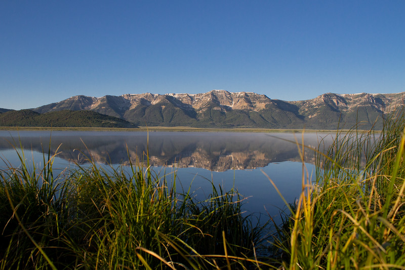 "Red Rock Lakes National WildLife Refuge <a href=""http://wklein.smugmug.com/Travel/Montana-Red-Rock-Lake-NWR-Elk"">http://wklein.smugmug.com/Travel/Montana-Red-Rock-Lake-NWR-Elk</a>"