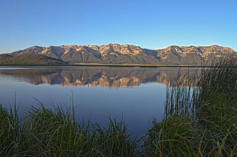 "Wigeon pond Centennial valley Red Rock Lakes National WildLife Refuge <a href=""http://wklein.smugmug.com/Travel/Montana-Red-Rock-Lake-NWR-Elk"">http://wklein.smugmug.com/Travel/Montana-Red-Rock-Lake-NWR-Elk</a>"