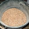 Pre-milled food