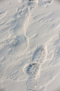 a footprint is etched into the frigid wind blown snow.