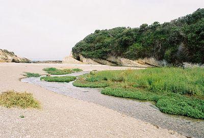 8/19/04 Islay Creek at Spooner's Cove