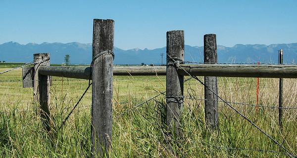 Fenceline, Flathead Valley