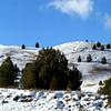 Bluebird Hills<br /> Big Arm, MT<br /> Dec 2010
