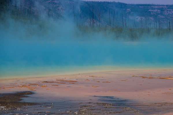 Colorful Grand Prismatic lake up close. It's just that colorful.