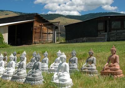 Sitting Buddhas, Garden of 10,000 Buddhas, near Arlee