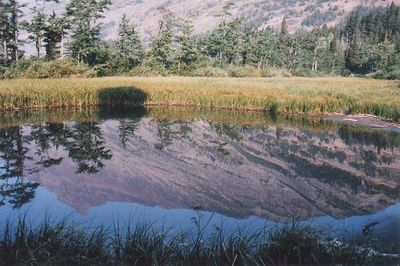 Mtn Reflected in Water