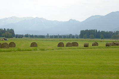 2008/07 Montana