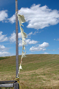 Prayer Flags, Garden of 10,000 Buddhas, Arlee