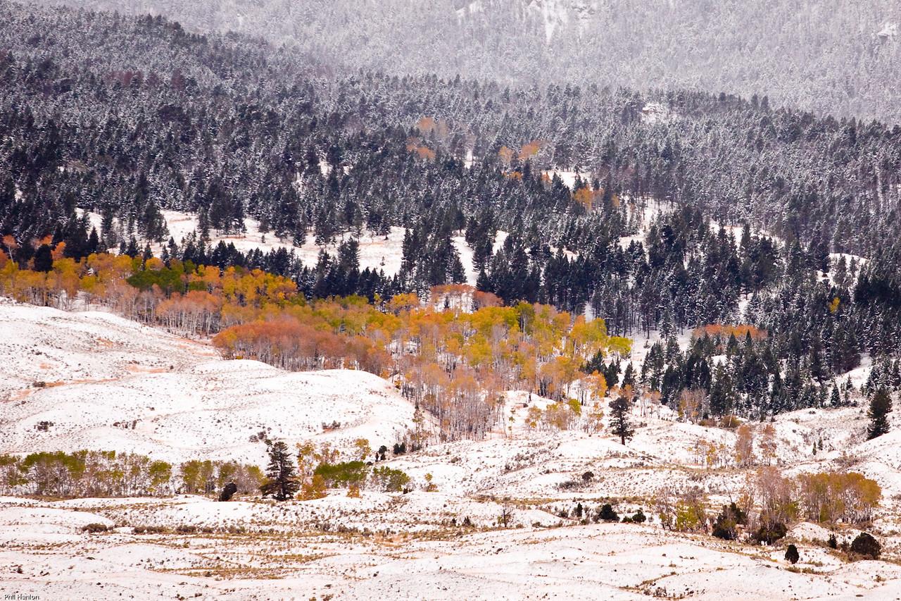 Traces of Autumn