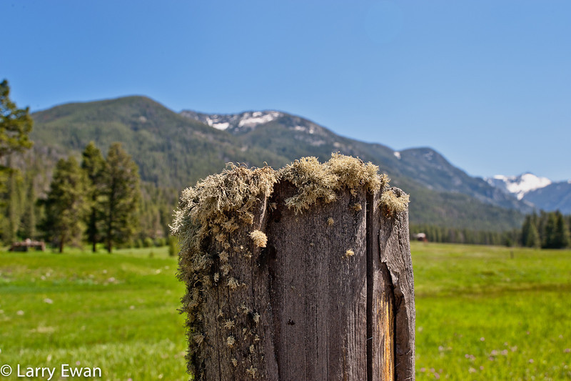 Scenery near the Lutheran Church Camp on the Boulder River south of Big Timber, MT.