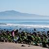 Montecito beach-0131