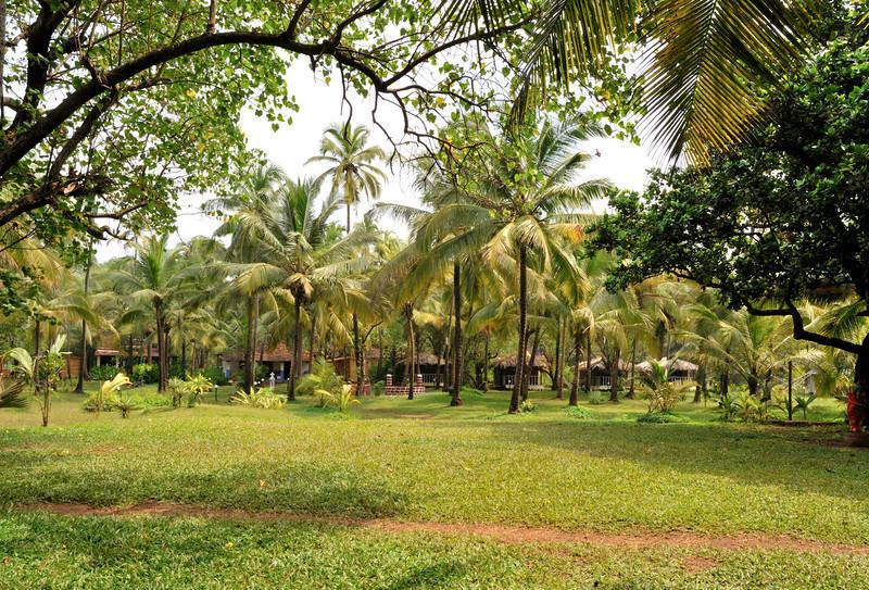 Montego Bay Resort