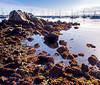 Motning Sun on Monterey Bay Marina