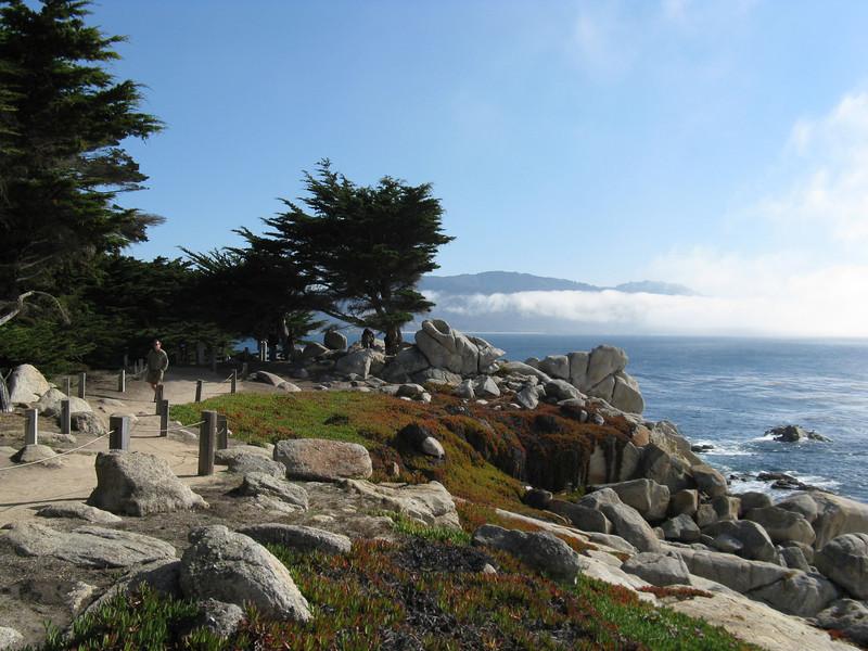 Monterey A720 - 146